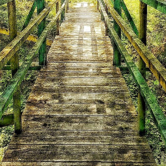 Dream Path