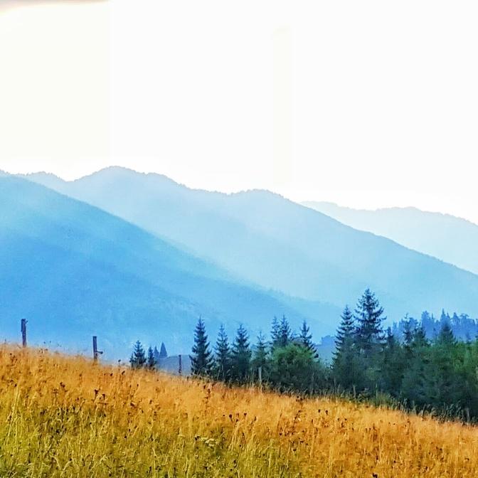 shadow-hills